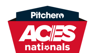 Wing Raiders Spartans represent Milton Keynes in Aces Nationals