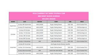mini schedule