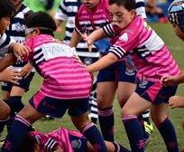SCAA CWB Mini & Junior Rugby Season Announced