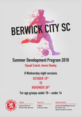 Summer Program with Aaron Healey for ages 10-14 for both boys and girls