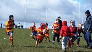 U7/8s V Willenhall - 23rd March 2014