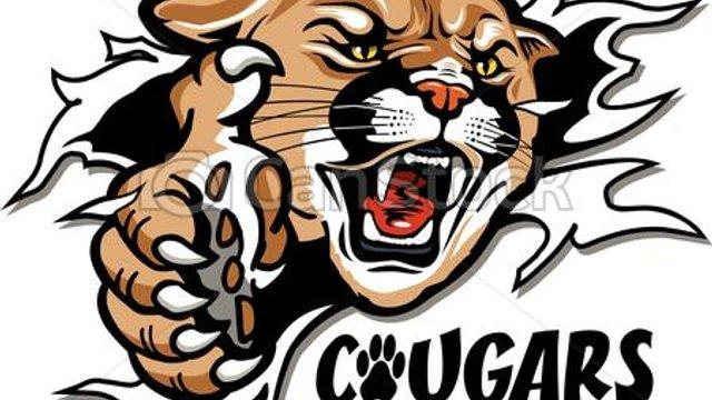 Kilmarnock Cougars(U12s)