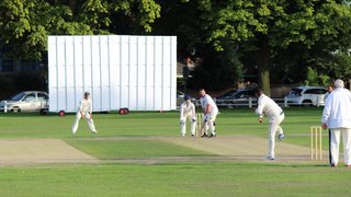TCC vs Temple Sheen Eccentrics CC