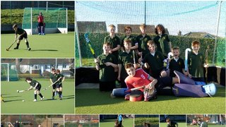 Report on Lewes Boys U12's at the Sussex County Finals Day