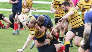 BRIGHTON BLUES 31-15 LDN CORNISH