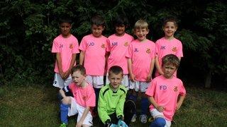 Under 7a's Milton Keynes Tournament June 2013