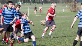 U13 Lancashire Cup Semi-Final away vs Manchester RUFC 30-03-14
