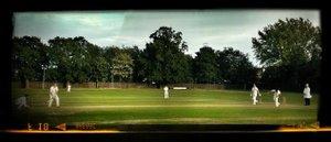 Colts Cricket