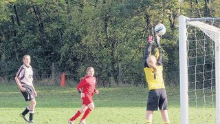 BINFIELD WILDCATS v BARTON ROVERS BELLES - 9th Nov 2013