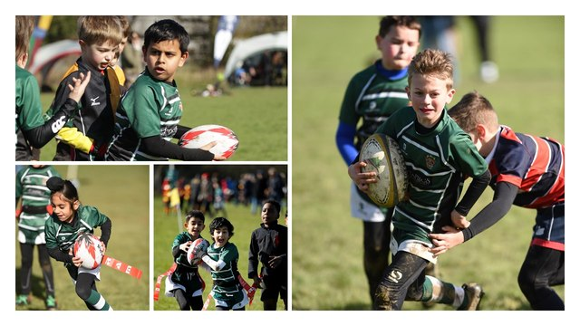 Free Rugby taster sessions for boys and girls!