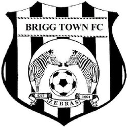 Brigg Town CIC Reserves