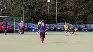 Fledglings away at Amersham 2014-15 (F)