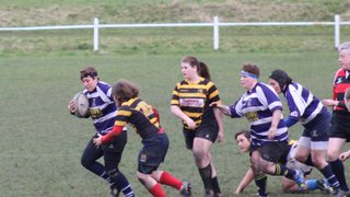 Halifax Ladies vs Derby Vipers 28th February 2015