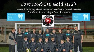 Eastwood CFC Saturday U12 Gold Season Review
