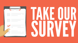 Darlaston's major improvements survey set to close BUT WE NEED MORE COMPLETED SURVEYS