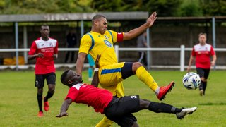 Darlaston produce a disciplined workman like performance to earn a point