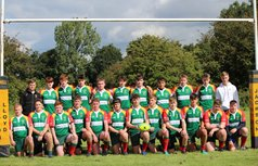 Junior Colts