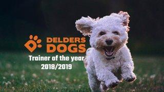 Delders Dogs are in the raffle !!