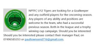 Our NPTFC Under 12 Tigers are looking for a Goalkeeper and any experienced outfield players