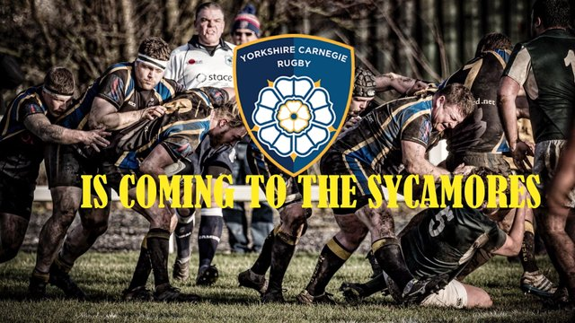 Yorkshire Carnegie is coming to the Sycamores