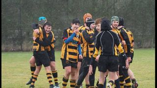 Bees u15 Win at SWF for the first time.