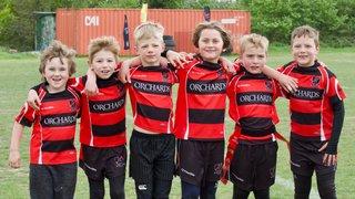 Heath RFC minis showcase their skills at Twickenham Festival