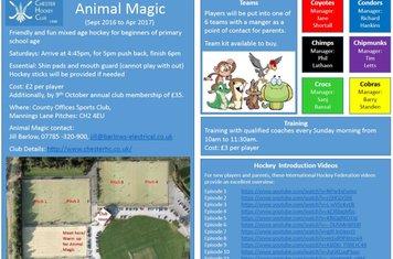 animal-magic-flyer