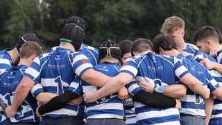 Announcing the Senior Rugby Festival at Haslemere Rugby