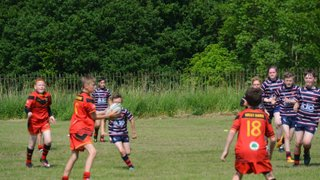 west bank bears v salford roosters