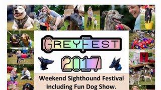 Greyfest 2017
