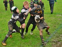 Rugby Camps 2018