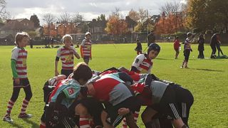 U12s UPHOLD FINEST TRADITIONS OF QUINS RUGBY AT SARACENS FESTIVAL
