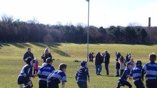 P4 Mini Rugby Season 15/16