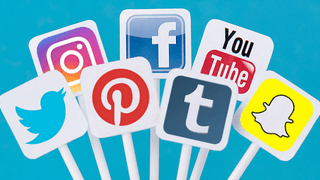 Social Media and Website volunteer needed