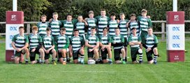 Under 18 Senior Colts
