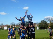 Bested by Biggleswade
