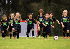 Miniroos Trials Expression of Interest Now Open 2020