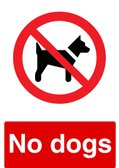 STRICT NO DOGS POLICY