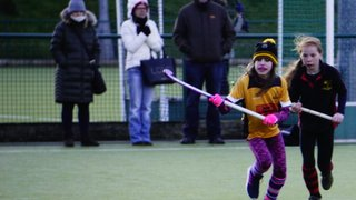 Bournville Worcestershire Tournament Under 12s 10 February 2019