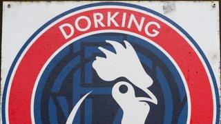 Dorking Wanderers v HARROW BOROUGH, Saturday 4th February 2018