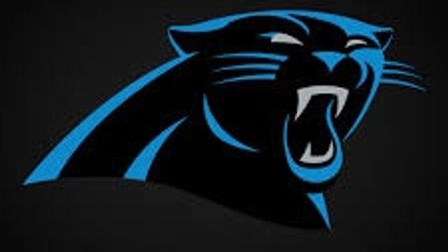 Long Eaton Panthers (U8)