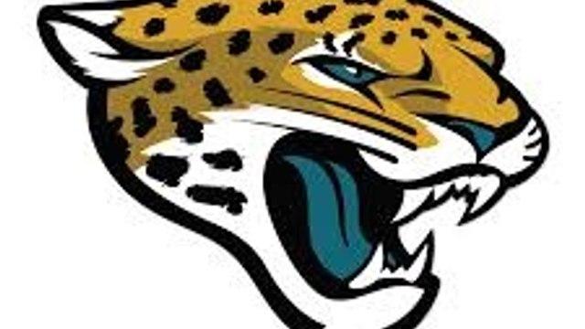 Long Eaton Jaguars (U9's)