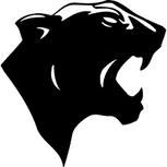 Long Eaton Pumas (U10's)