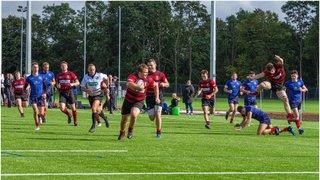 Senior rugby this weekend