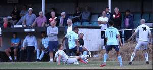 Swans Lose Entertaining Friendly With Dolphins