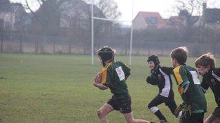 U10 Wolves vs Colchester Jan 15