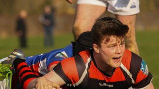 Warriors hope for home comforts after difficult period