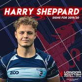 Past Players - Harry Sheppard