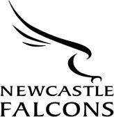 Do you require Falcons tickets? - Save money with the Club portal