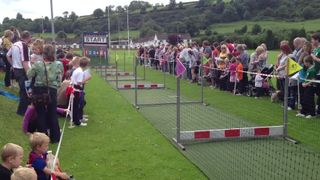 Pig Racing at Larne Rugby Club